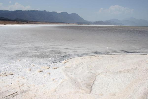 Foto van Lac Assal: a salty, white lake seen from the shore - Djibouti - Afrika