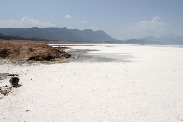 Foto van Lac Assal: white surface of a salty lake - Djibouti - Afrika