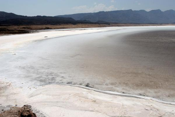 Picture of White shore of Lac AssalLac Assal - Djibouti