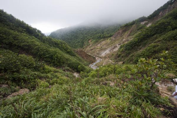 Foto van Lush vegetation surrounding the Valley of DesolationBoiling Lake - Dominica