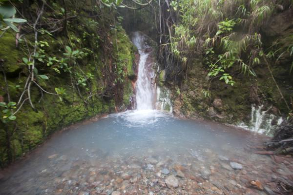 Foto de Small natural jacuzzi below the Valley of DesolationBoiling Lake - Dominica