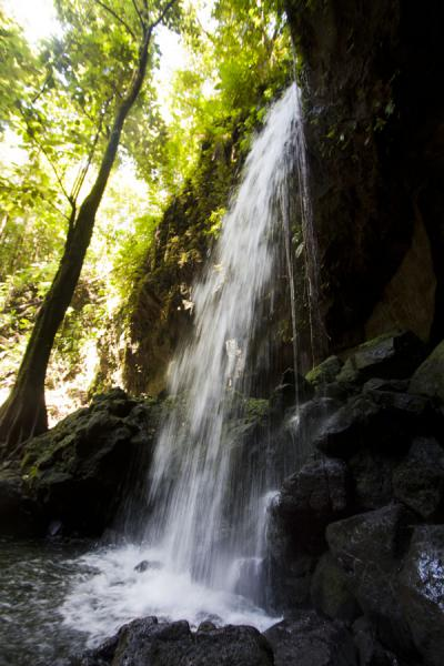 Side view of the waterfall at Emerald Pool | Emerald Pool | Dominica