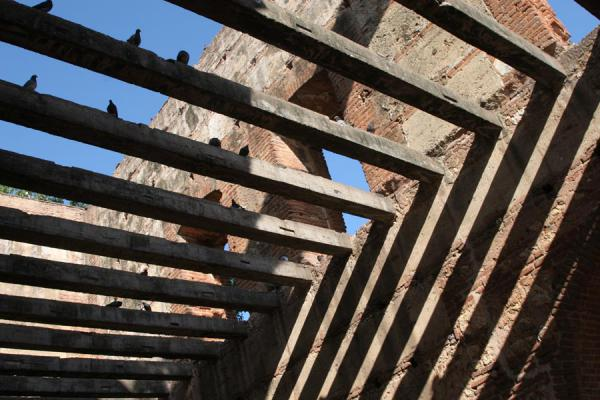 The ruins are a perfect playground for pigeons | Hospital San Nicolás de Bari | 多明尼加共和国