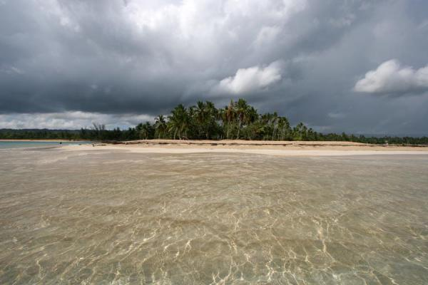 Foto de A dark sky over the palm trees and white beach of Las Terrenas - República Dominicana - América