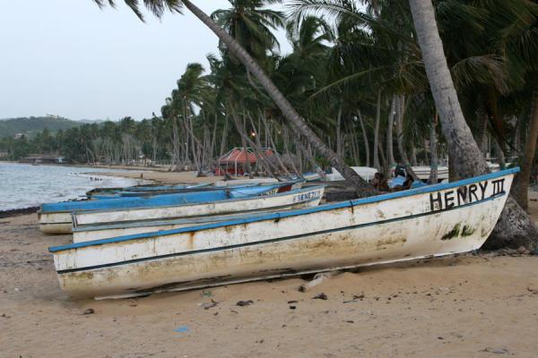 Foto de Fisherboats lying on the beach for a next catchLas Terrenas - República Dominicana