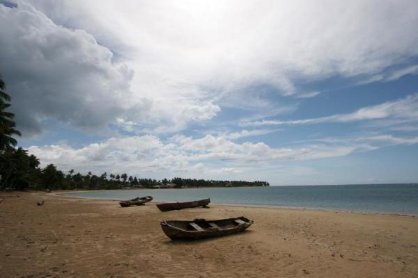 Beach of Las Terrenas with fisherboats - 多明尼加共和国