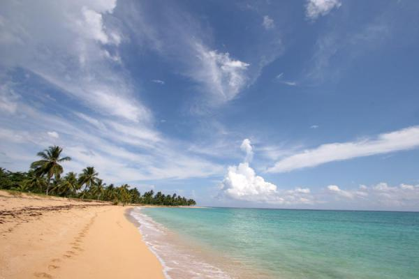 Foto de Turquoise sea and beach at Las Terrenas - República Dominicana - América