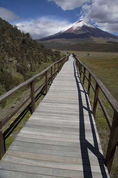 Wooden walkway at the Limpiopungo laguna with Cotopaxi in the background | Cotopaxi | Ecuador