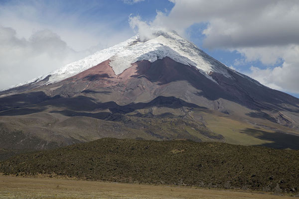 Foto van View of Cotopaxi from the north side near Limpiopungo lagunaCotopaxi - Ecuador