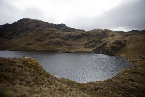 Photo de Lagoon surrounded by grass-covered mountains in El CajasParc National El Cajas - l'Equateur