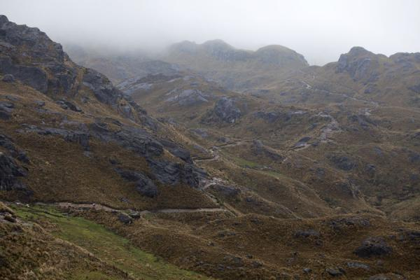 Picture of El Cajas National Park (Ecuador): Mountain trail in El Cajas leading to over 4.000m altitude