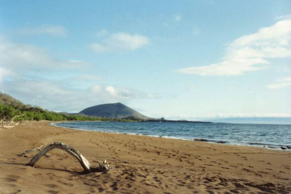 Picture of Galápagos Islands (Ecuador): Beach and hill on one of the islands of the Galápagos