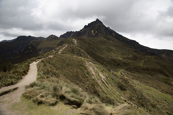 View of Rucu Pichincha from the lower slopes - 厄瓜多尔