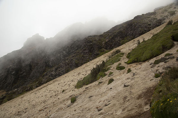 Foto di Sandy slope just below the summit of Rucu Pichincha - Ecuador - America