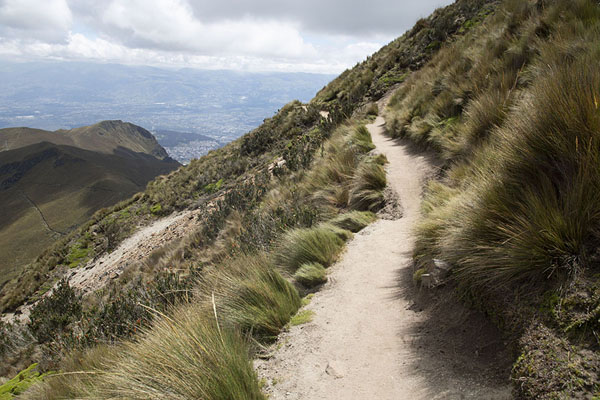 Foto van Trail on the slopes of Rucu Picihncha leading through the paramo landscapeRucu Pichincha - Ecuador