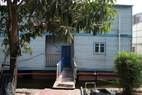 Tree, houseboat and entrance | Houseboats | Egypt