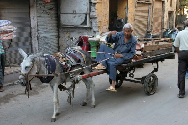 Picture of Darb al-Ahmar street scenes (Egypt): Man on cart pulled by a donkey