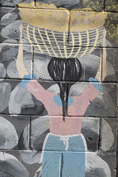 Woman with basket filled wth coffee - 萨尔瓦多