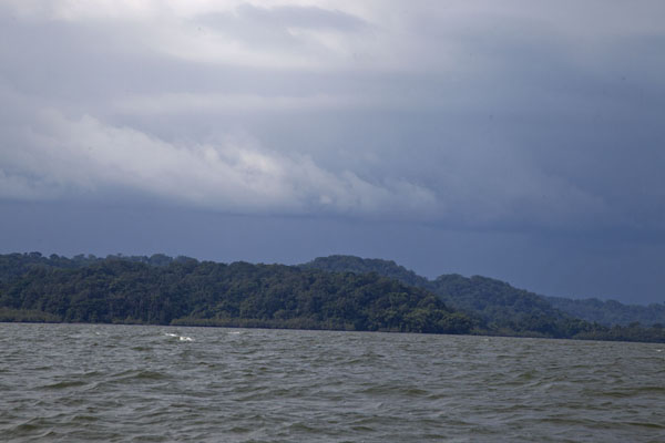 One of the islands in the estuary between Cocobeach and Kogo | Kogo border crossing | Equatorial Guinea