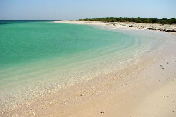 Foto di The beach of Assara island where we paused on our way back from the Dahlak archipelagoArcipelago Dahlak - Eritrea