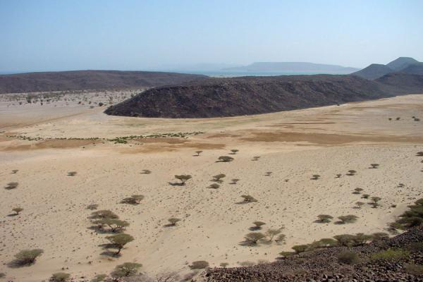 Picture of Dankalia (Eritrea): Dankalia region: beginning of desert