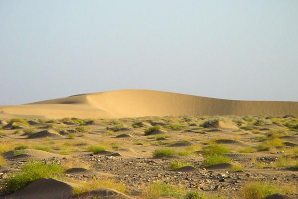 Picture of Dankalia (Eritrea): Sand dunes in Dankalia region