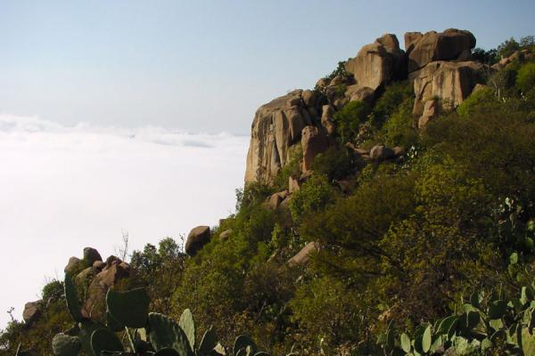 One of the majestic rocks of the mountain towering above the clouds | Debre Bizen | Eritrea