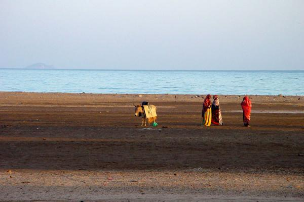 Picture of Colourful women on beach with donkey, Iddi