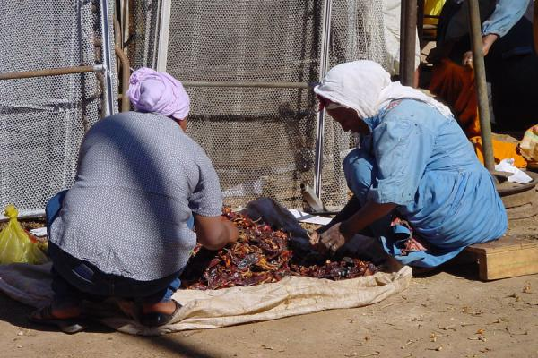 Preparing peppers: two women at work in a corner of Mederbar market in Asmara | Eritrean Markets | Eritrea