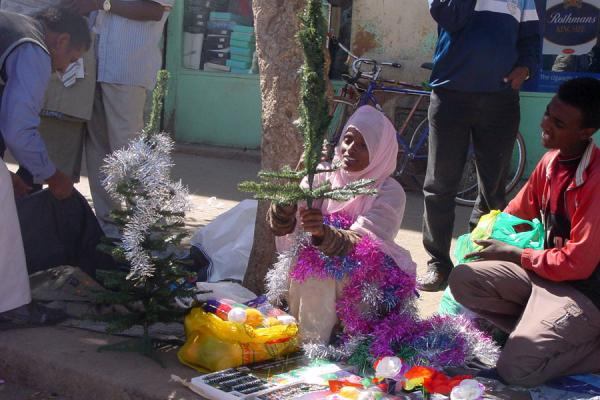 Selling Christmas trees on the streets | Eritrean Markets | Eritrea