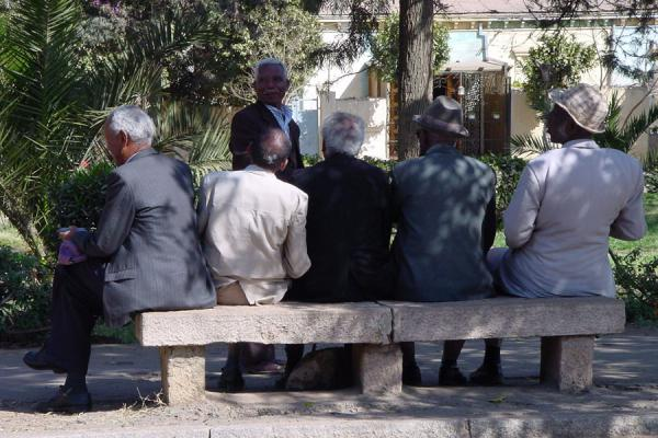 Sitting on a bench and discussing in a park in Asmara | Eritrean people | Eritrea