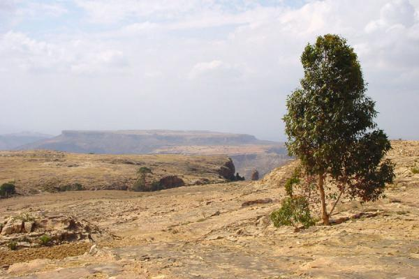 The views were spectacular | Hamm | Eritrea