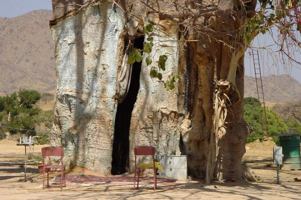 Foto de Entrance of the shrine inside the baobab treeKeren - Eritrea