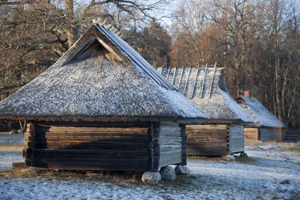 Row of wooden net sheds on the seashore of Kopli Bay | Estonian Open Air Museum | Estonia