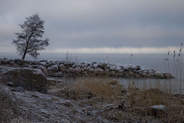 Foto van Coastline close to Virve with frost-covered bouldersLahemaa - Estland