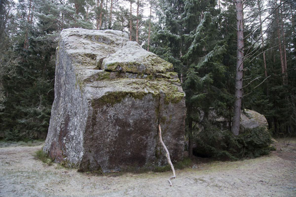 Foto van Tammispea stone boulder, the highest of such boulders in Estonia, is broken up into several chunksLahemaa - Estland