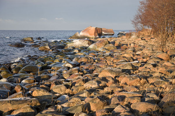 Foto van The shore of Juminda PeninsulaLahemaa - Estland