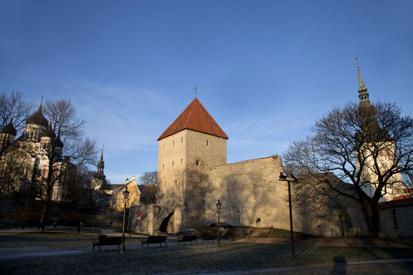 Panorama of the Upper Town with Alexander Nevsky Cathedral, part of the defence wall, and church tower | Old Tallinn | Estonia