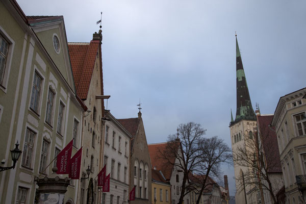 Street with traditional houses and the church tower of St. Olaf's church | Old Tallinn | Estonia