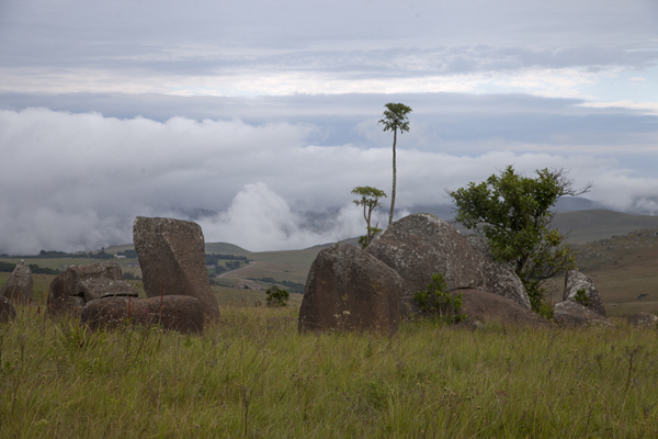 Clouds on the mountains in the background, and boulders with vegetation in the foreground | Malolotja National Park | Eswatini
