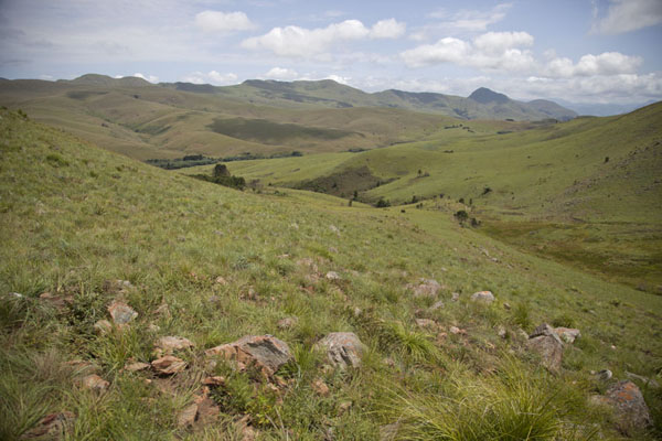 Foto van A green carpet of grass on the mountains of Malolotja - Eswatini - Afrika