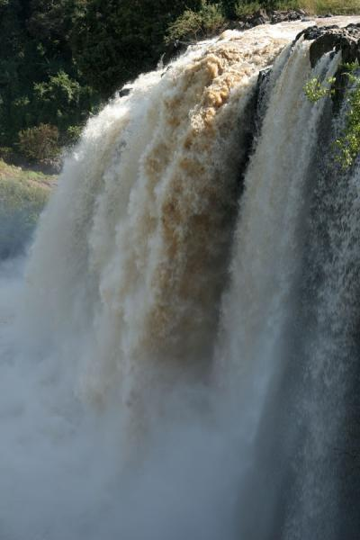 Picture of Blue Nile falls seen from up close