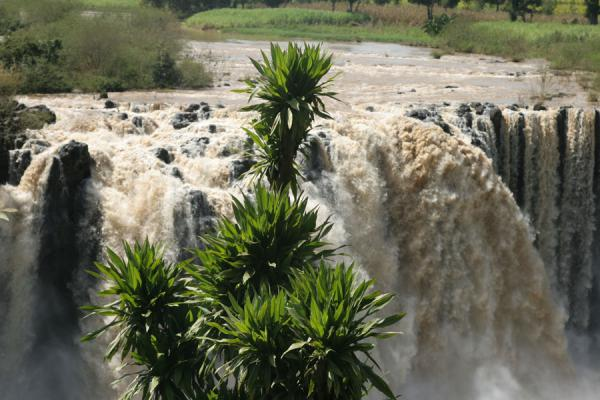 Close-up of Blue Nile falls | Blue Nile Falls | Ethiopia