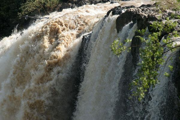 Detail of water falling in the main waterfall of Blue Nile falls | Blue Nile Falls | Ethiopia