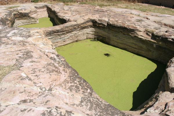 Water basins with duckweed | Debre Damo Monastery | Ethiopia