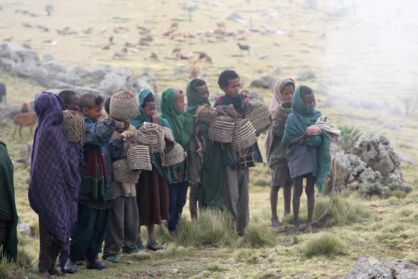 Picture of Ethiopian kids (Ethiopia): Shepherds selling woolen hats in the Simien mountains