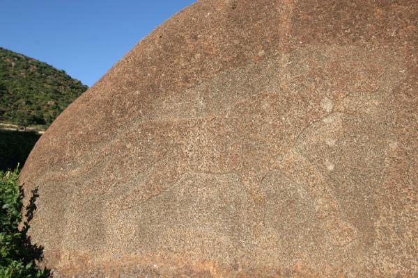 Lioness of Gobedra etched in a rock south of Axum | Gobedra Lioness & Quarry | Ethiopia