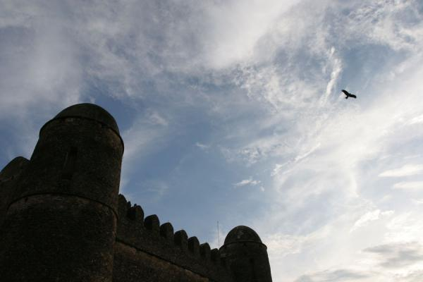 Foto di Fasil Castle in the Royal EnclosureGonder - Etiopia