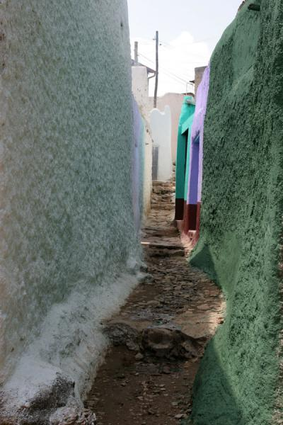 One of the many alleys of Harar | Harar | Ethiopia