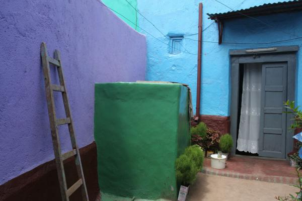 Bright colours make the old houses of Harar look fresh | Harar | Ethiopia